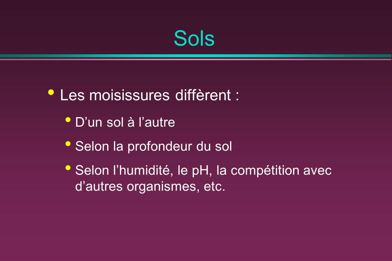 Sols Les moisissures diffèrent : Dun sol à lautre Selon la profondeur du sol Selon lhumidité, le pH, la compétition avec dautres organismes, etc.