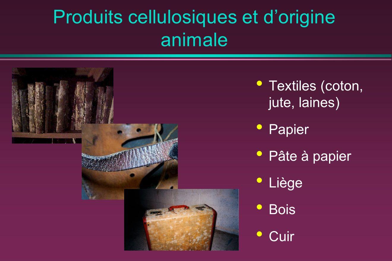 Produits cellulosiques et dorigine animale Textiles (coton, jute, laines) Papier Pâte à papier Liège Bois Cuir