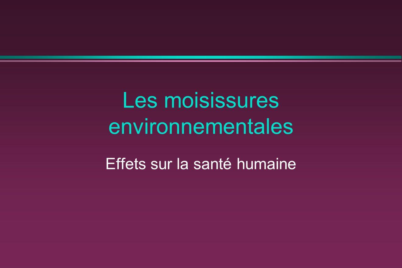 Les moisissures environnementales Effets sur la santé humaine