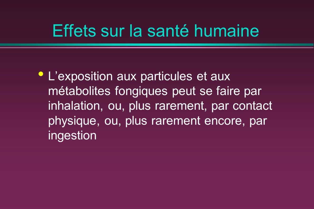 Effets sur la santé humaine Lexposition aux particules et aux métabolites fongiques peut se faire par inhalation, ou, plus rarement, par contact physique, ou, plus rarement encore, par ingestion