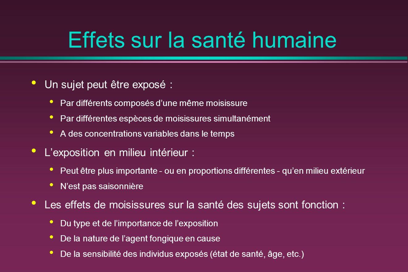 Effets sur la santé humaine Un sujet peut être exposé : Par différents composés dune même moisissure Par différentes espèces de moisissures simultaném
