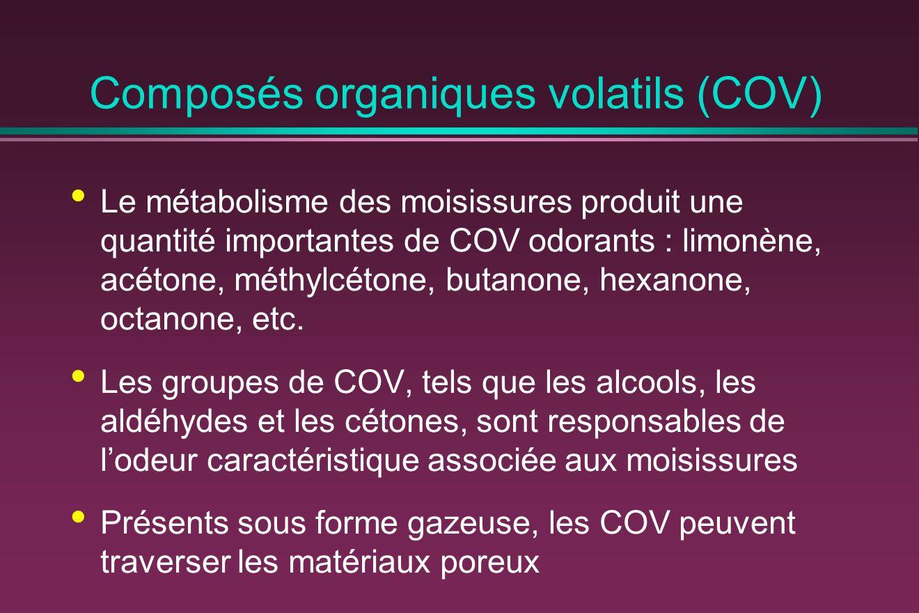 Composés organiques volatils (COV) Le métabolisme des moisissures produit une quantité importantes de COV odorants : limonène, acétone, méthylcétone, butanone, hexanone, octanone, etc.