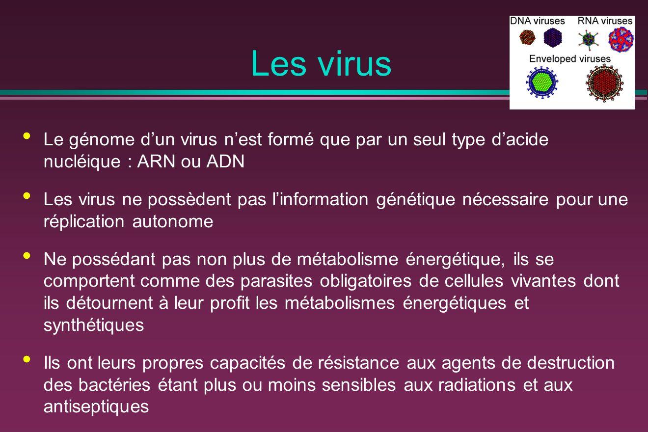 Les virus Le génome dun virus nest formé que par un seul type dacide nucléique : ARN ou ADN Les virus ne possèdent pas linformation génétique nécessai