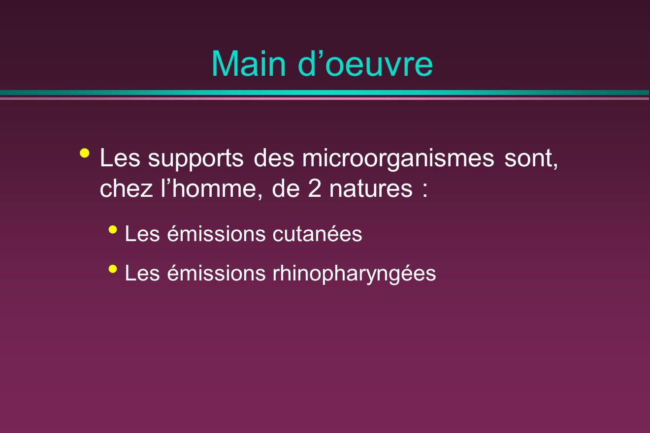 Main doeuvre Les supports des microorganismes sont, chez lhomme, de 2 natures : Les émissions cutanées Les émissions rhinopharyngées