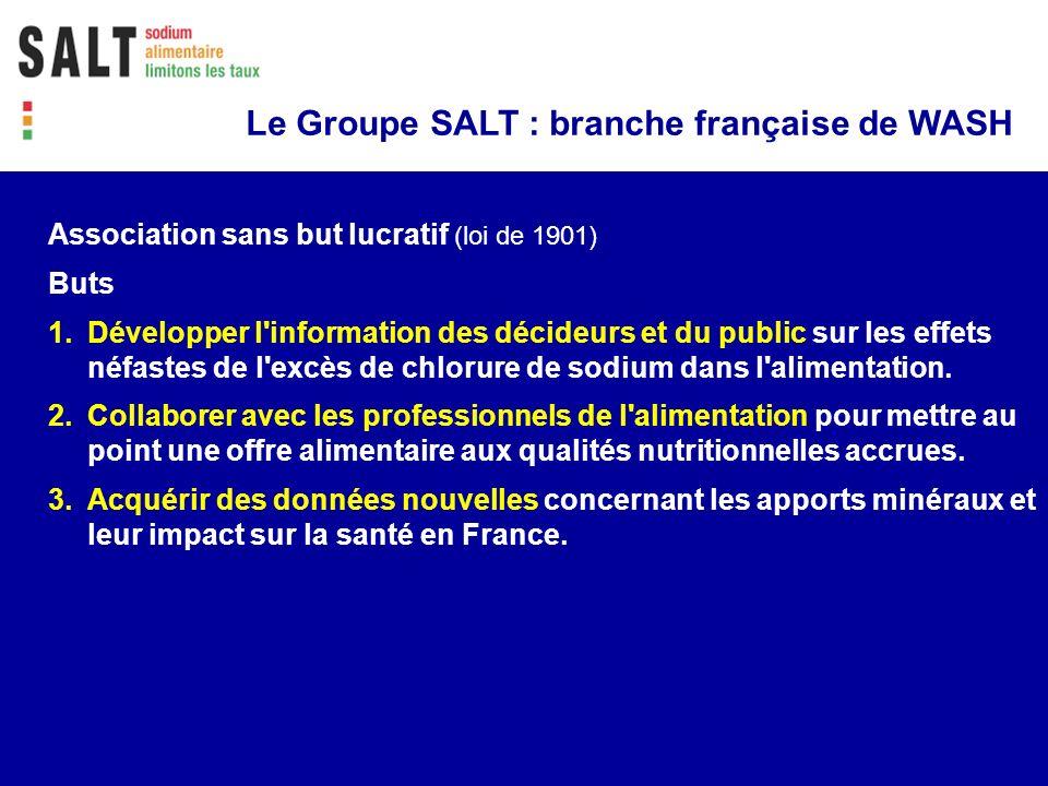 Le Groupe SALT : branche française de WASH Association sans but lucratif (loi de 1901) Buts 1.Développer l'information des décideurs et du public sur