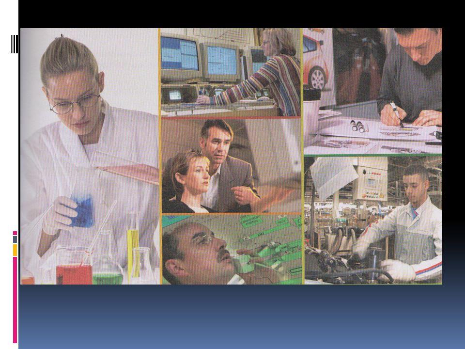 IV/ La fonction ressources humaines dans les organisations (Document 4 page 141) 1.
