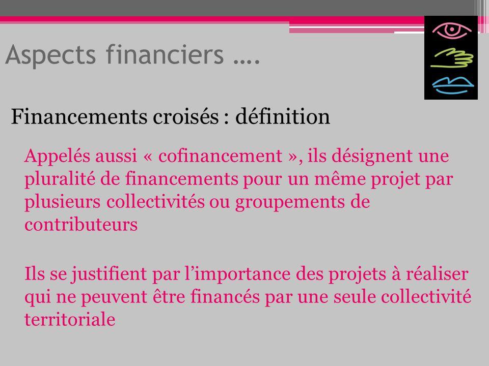 Aspects financiers …. Financements croisés : définition Appelés aussi « cofinancement », ils désignent une pluralité de financements pour un même proj
