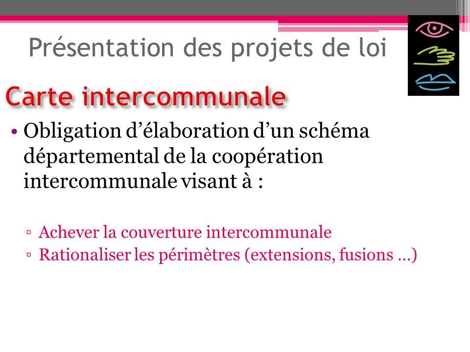 Présentation des projets de loi Obligation délaboration dun schéma départemental de la coopération intercommunale visant à : Achever la couverture int
