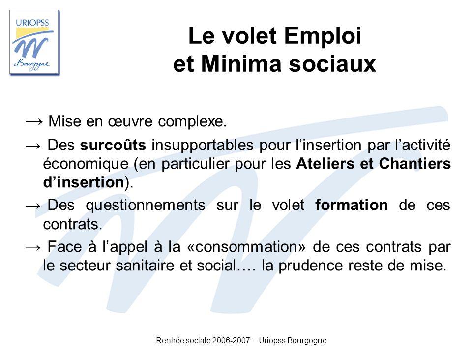 Rentrée sociale 2006-2007 – Uriopss Bourgogne Le volet Emploi et Minima sociaux Mise en œuvre complexe. Des surcoûts insupportables pour linsertion pa