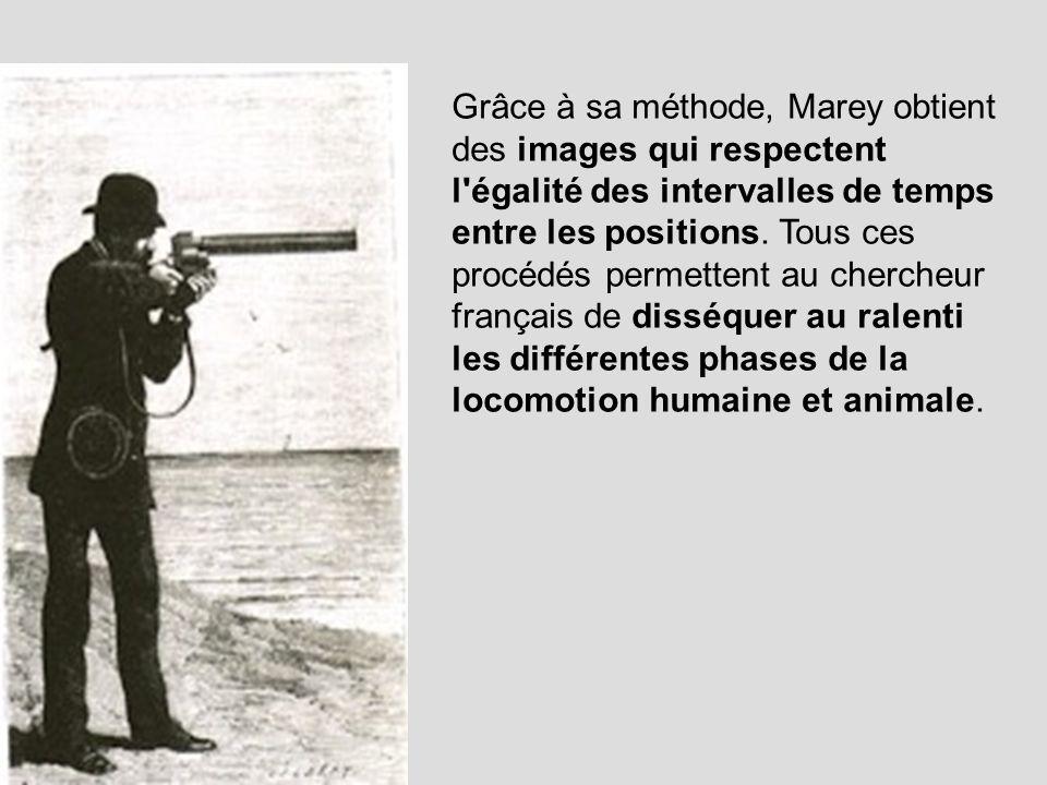 Grâce à sa méthode, Marey obtient des images qui respectent l égalité des intervalles de temps entre les positions.