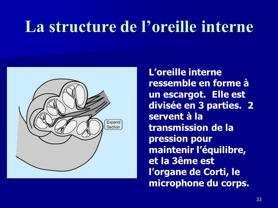 32 Les osselets Les 3 os les plus petits du corps forment une série de leviers qui transforment le grand mouvement du tympan dans un mouvement beaucoup plus petit, mais plus intense sur la fenêtre ovale de loreille interne.