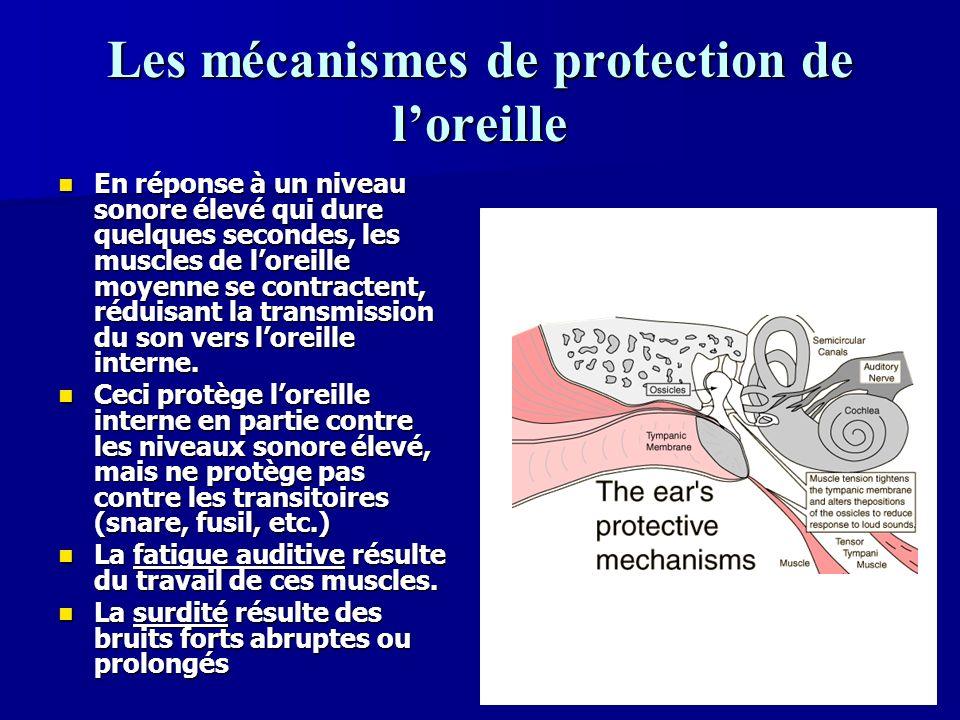 37 Les périlymphe et lendolymphe Les changements de pression causées par le son voyagent dans les canaux de loreille interne qui sont remplis par un liquide appelé périlymphe.