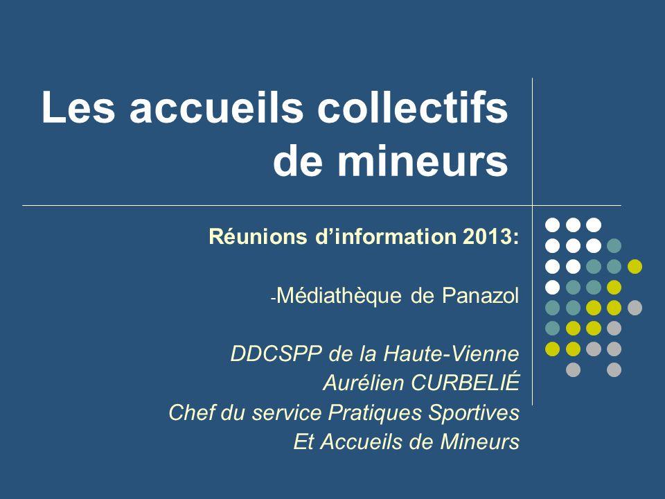Les accueils collectifs de mineurs Réunions dinformation 2013: - Médiathèque de Panazol DDCSPP de la Haute-Vienne Aurélien CURBELIÉ Chef du service Pr