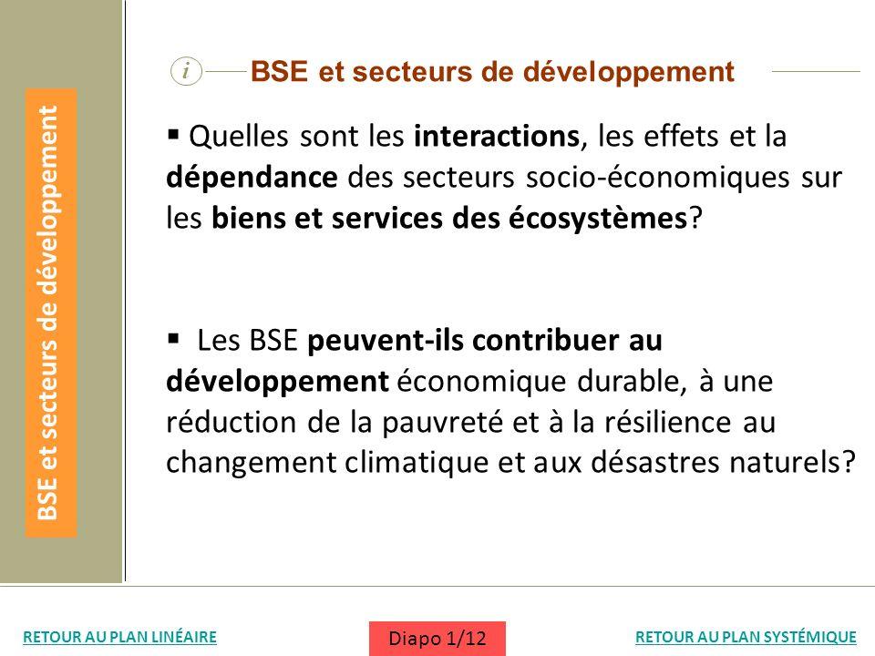 i BSE et secteurs de développement Quelles sont les interactions, les effets et la dépendance des secteurs socio-économiques sur les biens et services