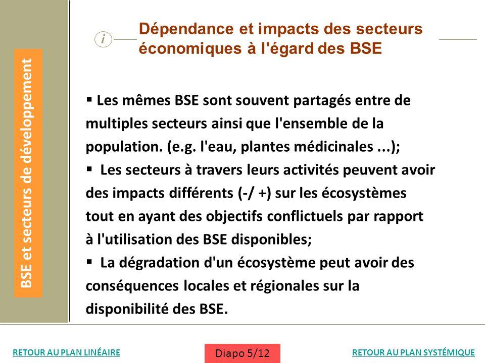 i Dépendance et impacts des secteurs économiques à l'égard des BSE Les mêmes BSE sont souvent partagés entre de multiples secteurs ainsi que l'ensembl