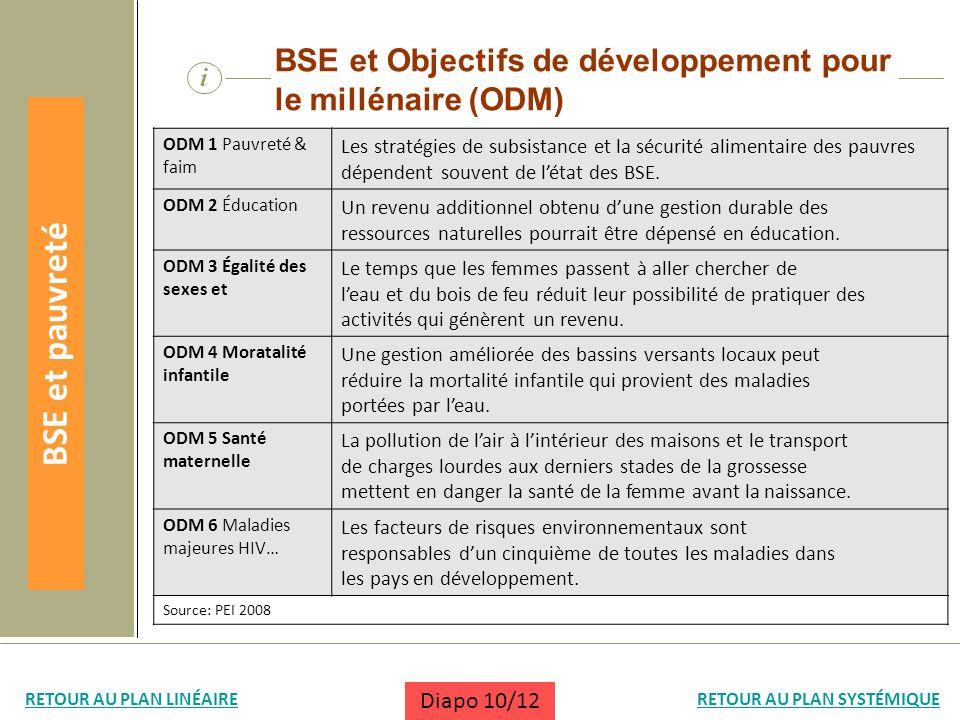 i BSE et Objectifs de développement pour le millénaire (ODM) ODM 1 Pauvreté & faim Les stratégies de subsistance et la sécurité alimentaire des pauvre