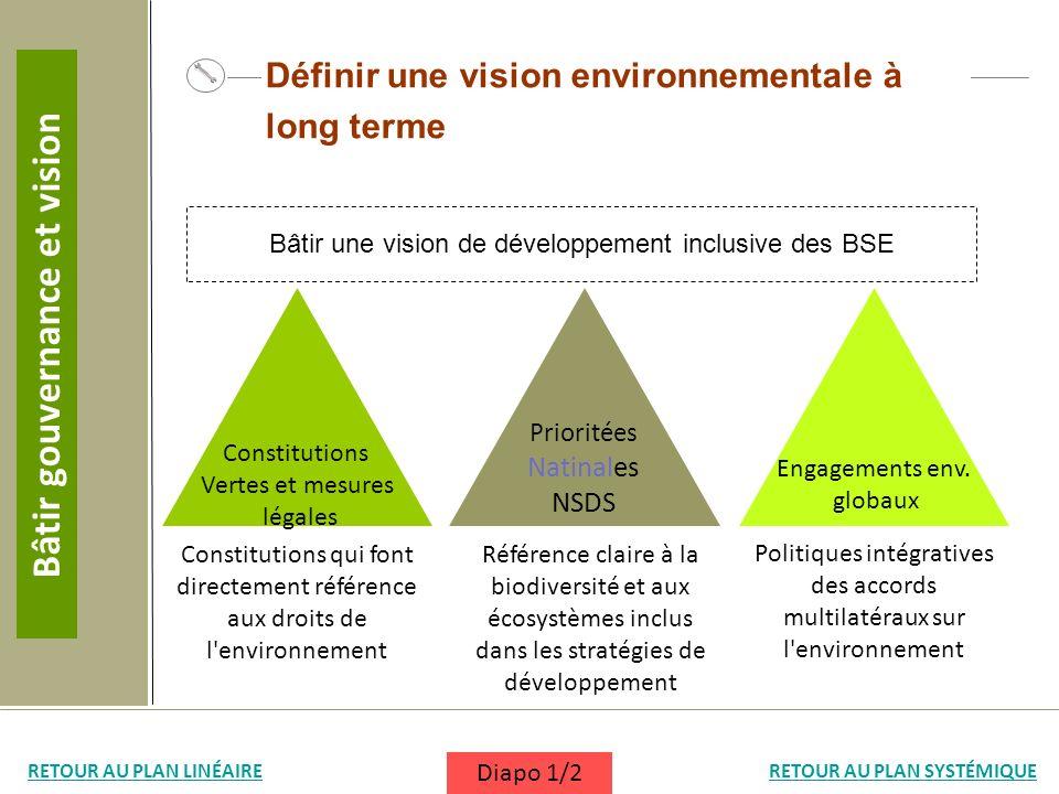 Définir une vision environnementale à long terme Référence claire à la biodiversité et aux écosystèmes inclus dans les stratégies de développement Con