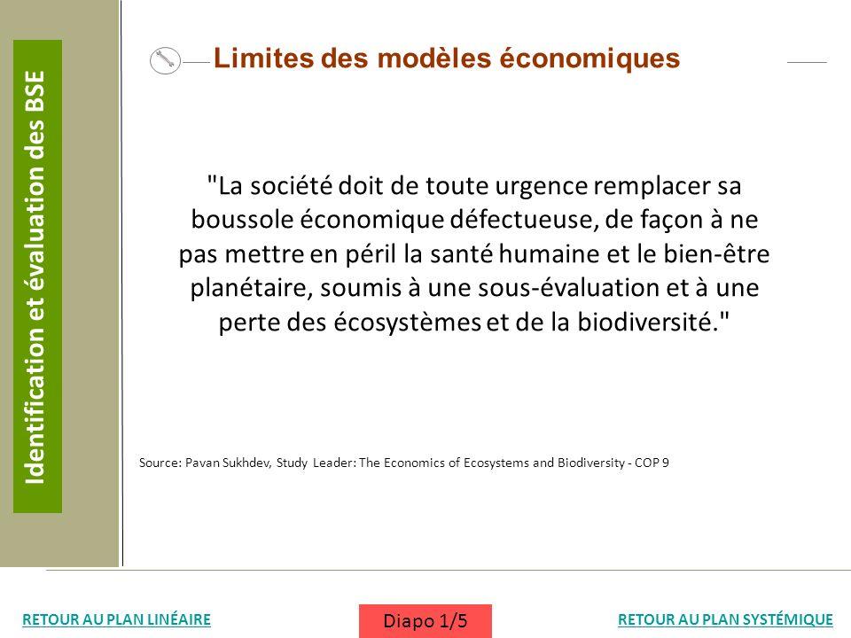 Limites des modèles économiques