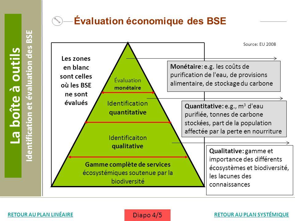 Évaluation économique des BSE Gamme complète de services écosystémiques soutenue par la biodiversité Identificaiton qualitative Identification quantit