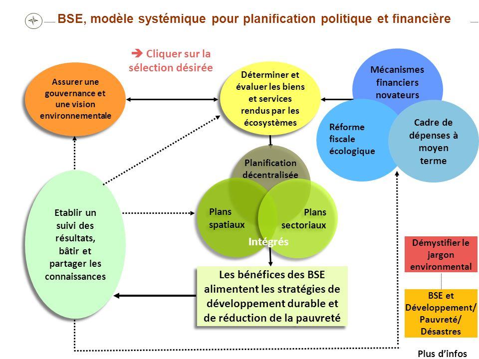 Limites de la planification décentralisée (Bolivie, Ghana, Tanzanie) Étude de cas Source: OECD 2001 Planification intégrée/inclusive de BSE Dans de nombreux pays, il existe des cadres de planification stratégique aux niveaux provincial et de district, tels que les plans de district d action environnemental et Agendas 21 locaux.