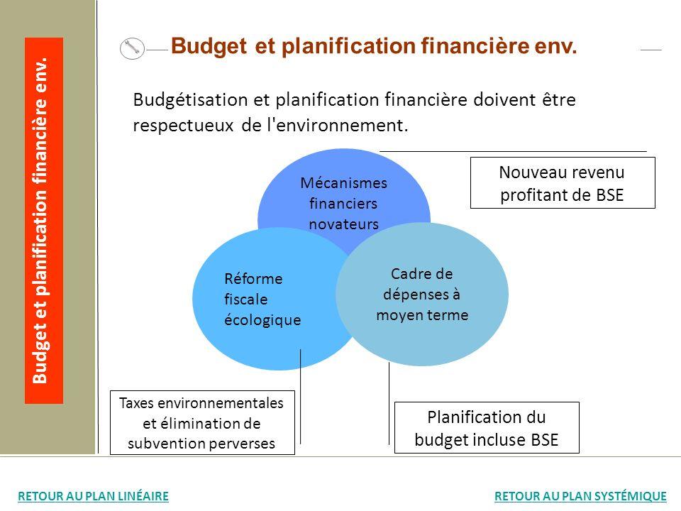 Mécanismes financiers novateurs Réforme fiscale écologique Cadre de dépenses à moyen terme Nouveau revenu profitant de BSE Taxes environnementales et