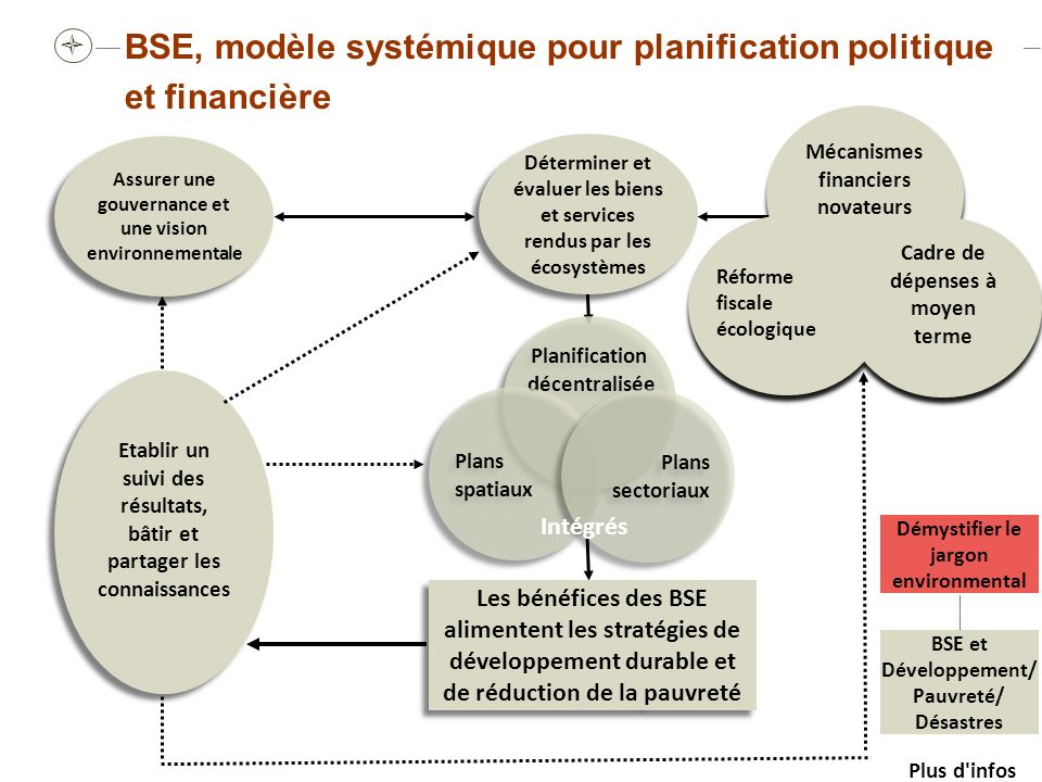 Renforcer les capacités afin d introduire les BSE dans les plans sectoriels; Déterminer les BSE disponibles; Introduire dans la budgétisation les BSE au sein des CDMT et autres outils; Capturer les BSE dans les mesures économiques; Les scientifique doivent vulgariser les informations afin quelles puissent être utilisées par les décideurs.