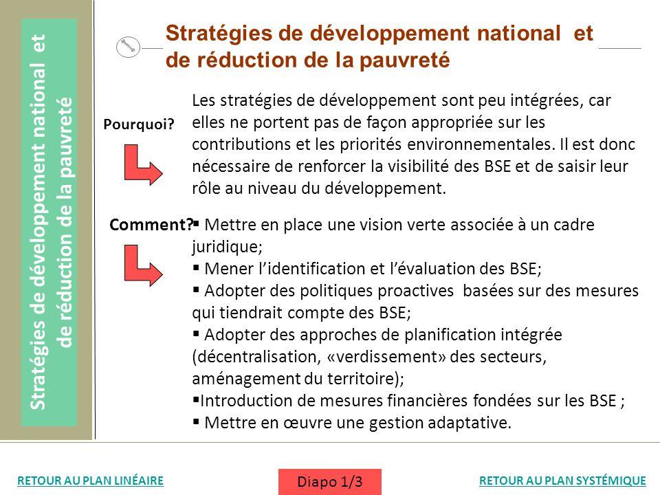 Stratégies de développement national et de réduction de la pauvreté Les stratégies de développement sont peu intégrées, car elles ne portent pas de fa
