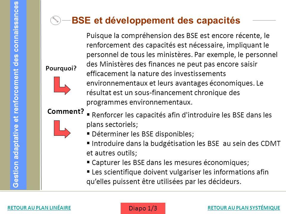 Renforcer les capacités afin d'introduire les BSE dans les plans sectoriels; Déterminer les BSE disponibles; Introduire dans la budgétisation les BSE