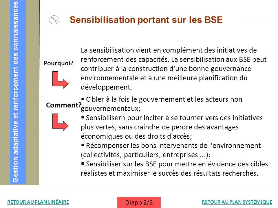 Sensibilisation portant sur les BSE Cibler à la fois le gouvernement et les acteurs non gouvernementaux; Sensibilisern pour inciter à se tourner vers