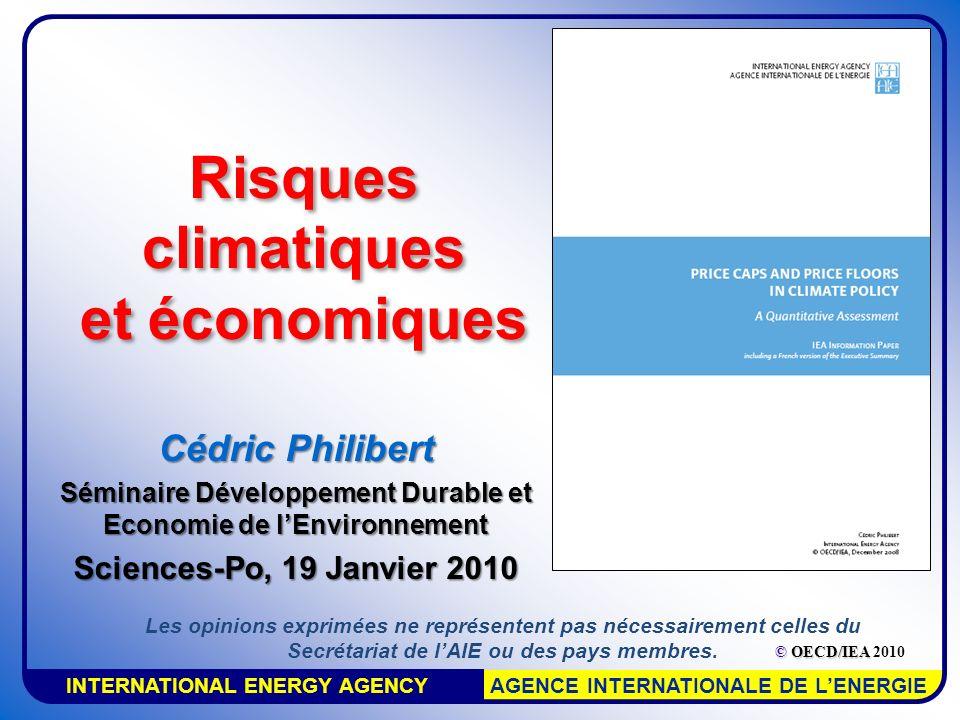 INTERNATIONAL ENERGY AGENCY AGENCE INTERNATIONALE DE LENERGIE Risques climatiques et économiques Cédric Philibert Séminaire Développement Durable et E