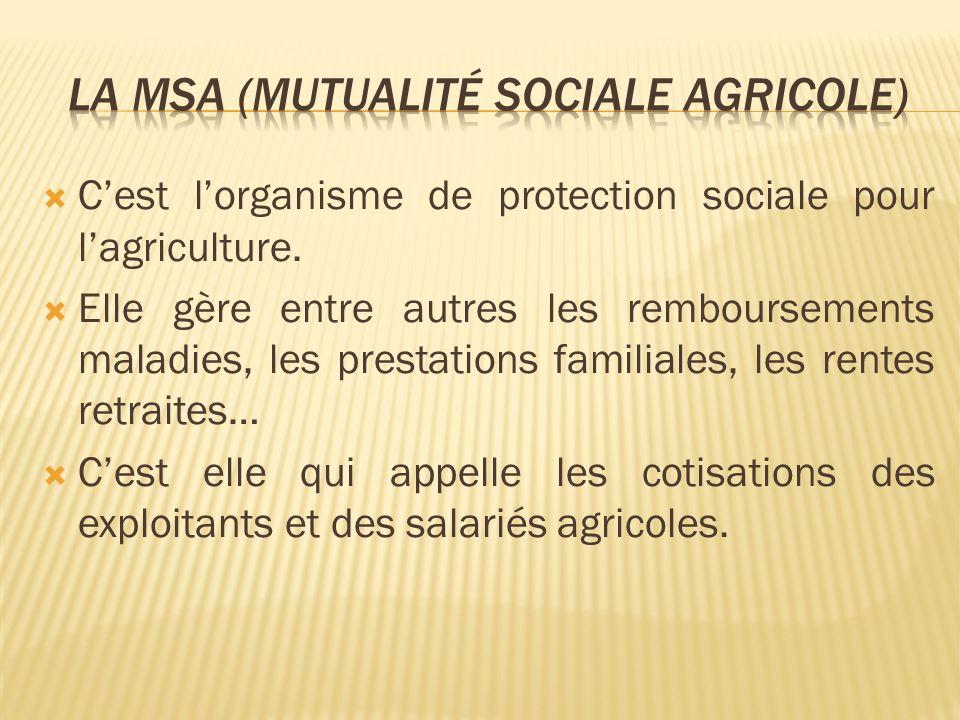 Cest lorganisme de protection sociale pour lagriculture. Elle gère entre autres les remboursements maladies, les prestations familiales, les rentes re