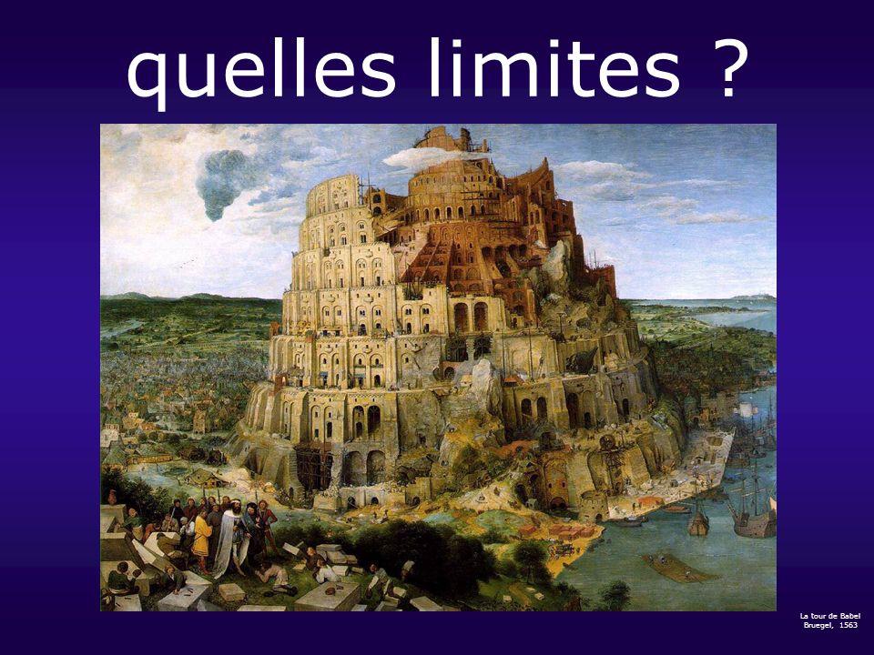 quelles limites ? La tour de Babel Bruegel, 1563