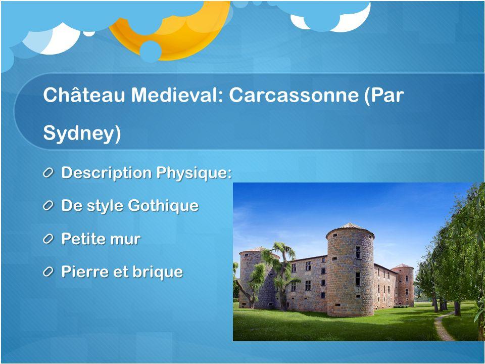 Château Medieval: Carcassonne (Par Sydney) Description Physique: De style Gothique Petite mur Pierre et brique