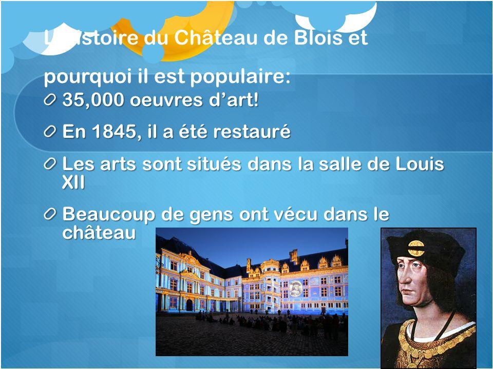 LHistoire du Château de Blois et pourquoi il est populaire: 35,000 oeuvres dart.