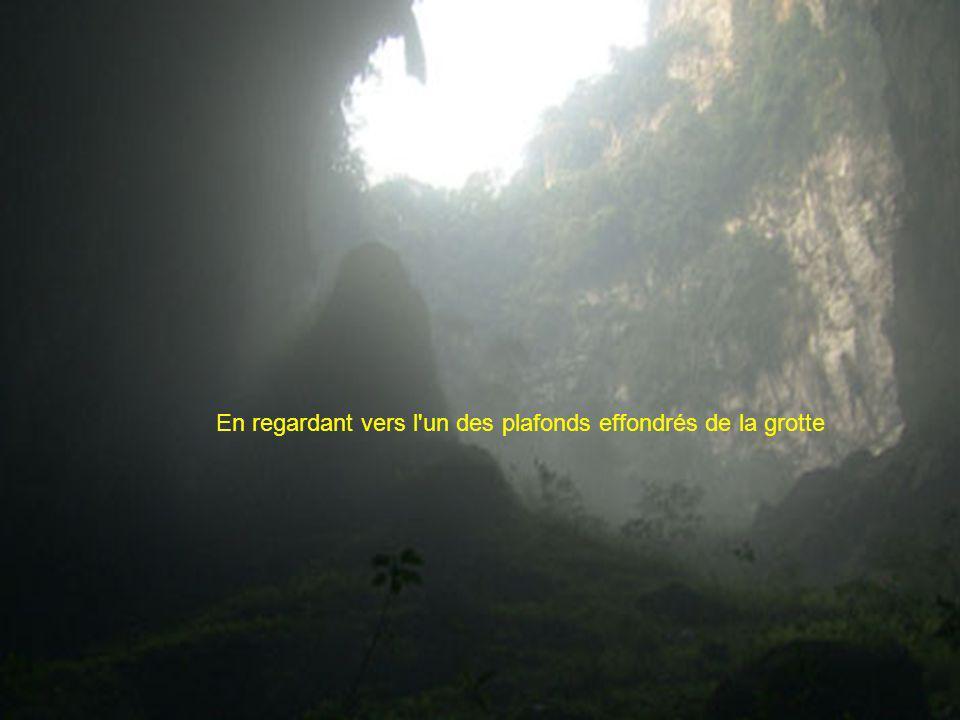 Laffaissement des Dolines: A un quart de mile en dessous de la surface de la jungle des Dolines se sont créés quand un système du plafond de la cavern