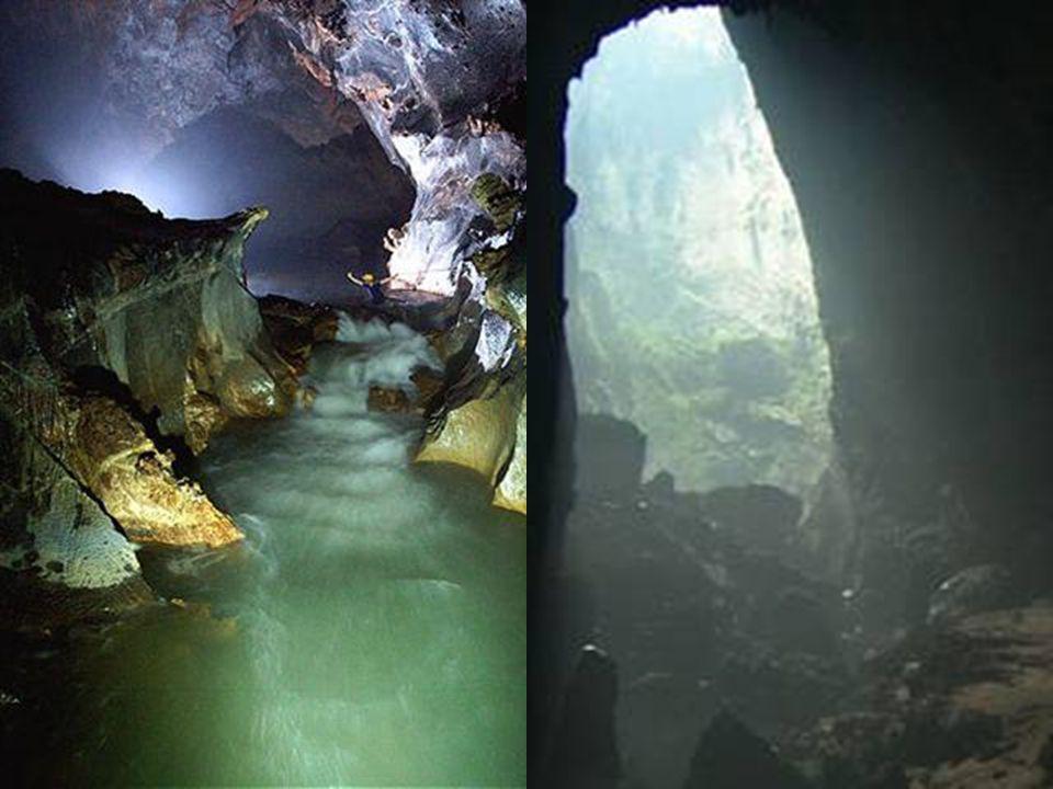 Les Dolines sont créés lorsque le plafond de la grotte s'effondre vers l'intérieur permettant à la lumière du jour dentrer et de créer ainsi de nouvea
