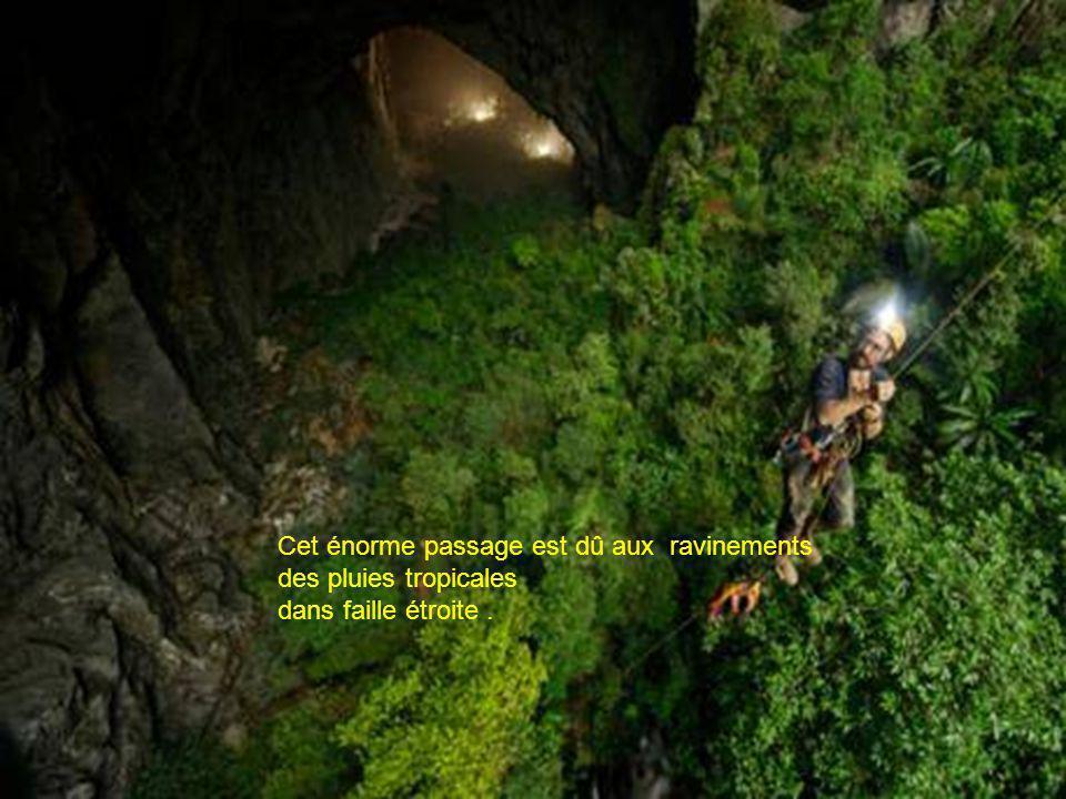 Cette nouvelle grotte mesure 200m de haut et 150m de large et semble être comme presque deux fois la taille de l'actuel détenteur du record qui est la