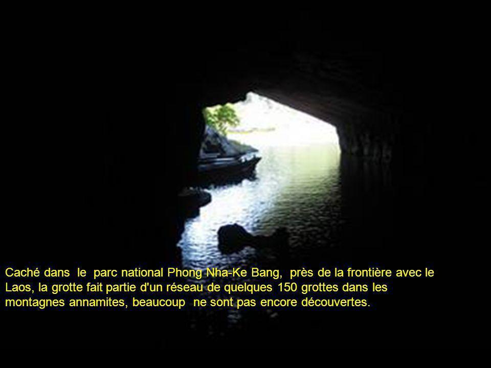 Caché dans le parc national Phong Nha-Ke Bang, près de la frontière avec le Laos, la grotte fait partie d un réseau de quelques 150 grottes dans les montagnes annamites, beaucoup ne sont pas encore découvertes.