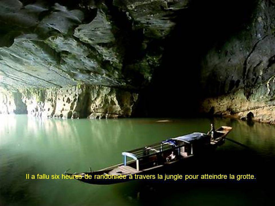 Les spéléologues étaient émerveillés par une cascade pétrifiée, une cascade de calcaire à cannelures verdie par les algues.