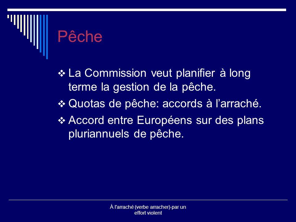 Résumé Les ministres européens de la Pêche ont trouvé vendredi le 12 décembre à Bruxelles un accord à la quasi-unanimité sur des plans de reconstitution des espèces de poissons les plus menacées des eaux européennes, sur les plafonds de captures et les quotas da pêche 2004 pour chaque pay de lUE, après deux jours de négociations.