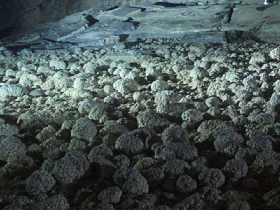 National Geographic a envoyé une équipe pour cartographier la grotte en 2010. Les superbes photos de Carsten Peter ont été présentées dans le numéro d