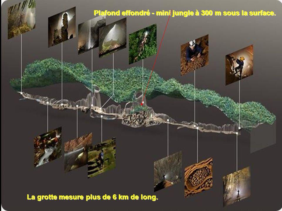 La grotte n'avait encore jamais été explorée, même par la population locale, car lentrée est petite par rapport aux autres grottes vietnamiennes (10 m
