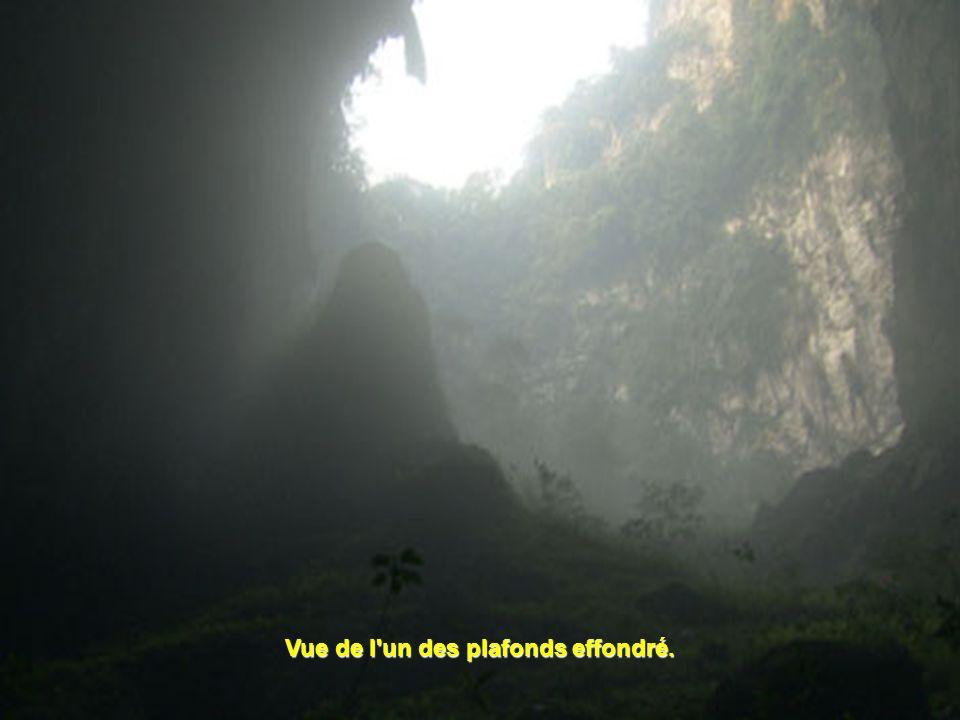 Leffondrement des dolines : A 300 m sous la surface de la jungle, des gouffres se sont créés quand une partie du plafond de la caverne sest effondrée,