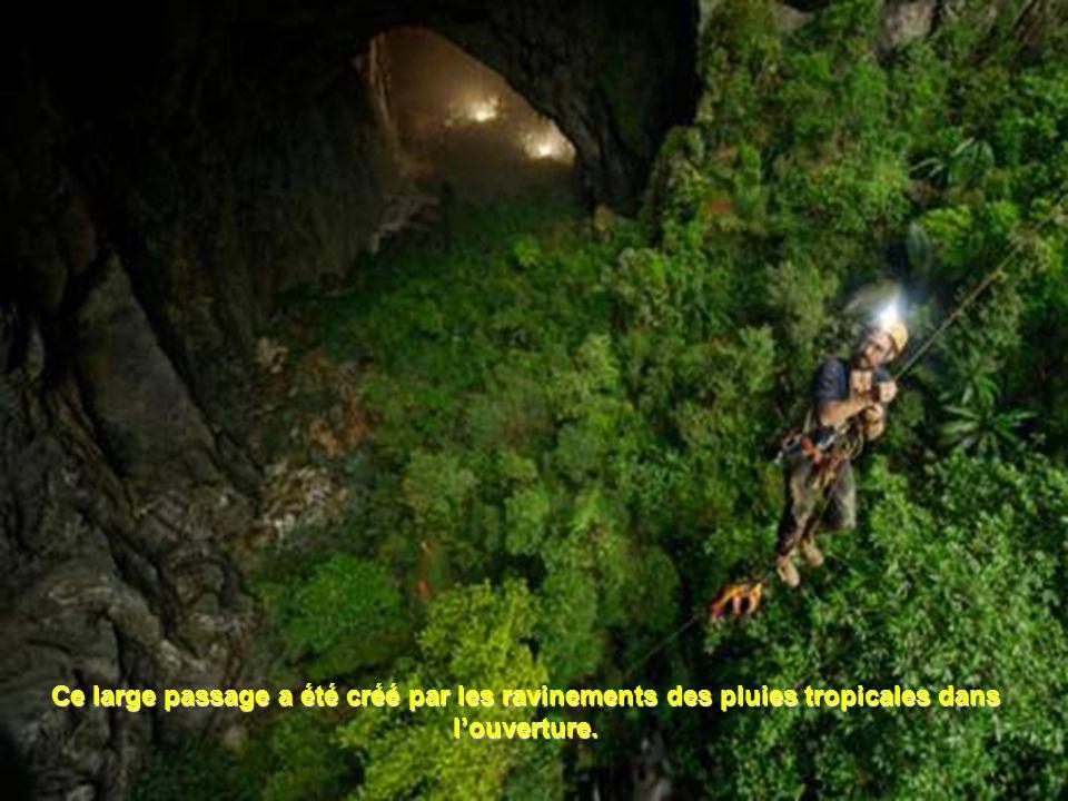 Cette nouvelle salle mesure 200 m de haut et 150 m de large, environ deux fois la taille du précédent record de la grotte Deer en Malaisie.