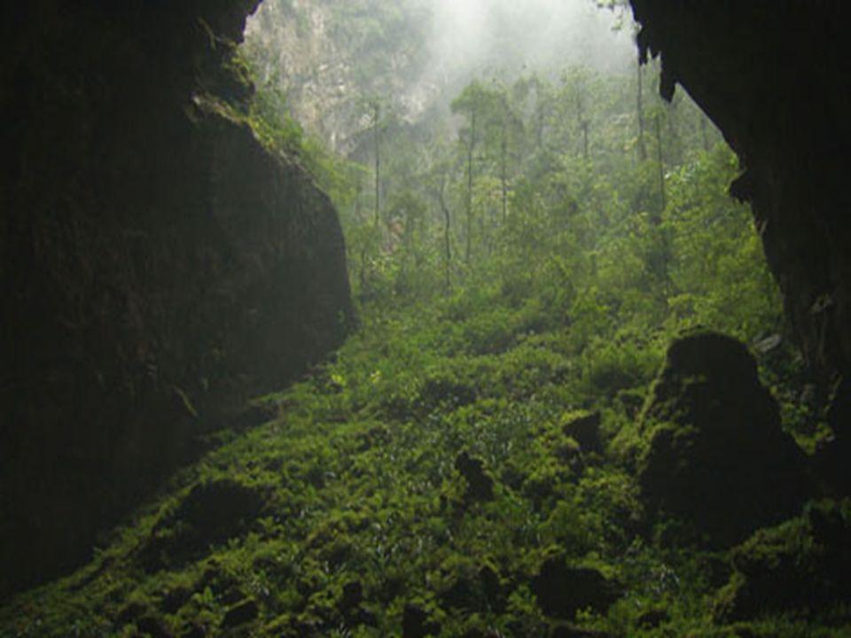 .. Ce large passage a été créé par les ravinements des pluies tropicales dans louverture.