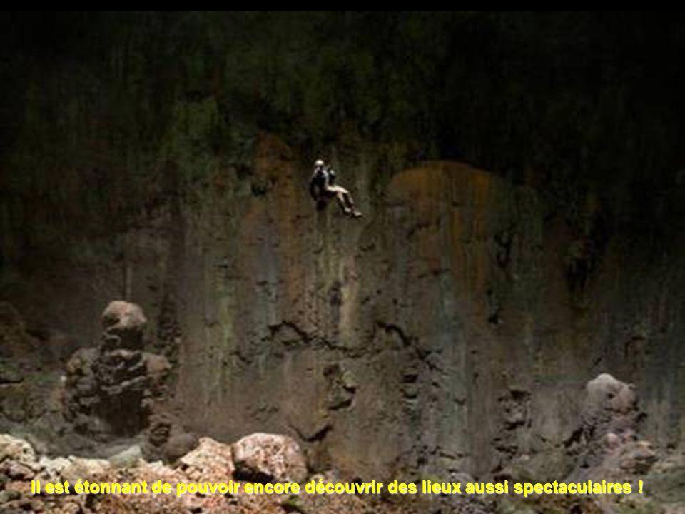 A 300 m sous la surface, une mini jungle au fond du gouffre.