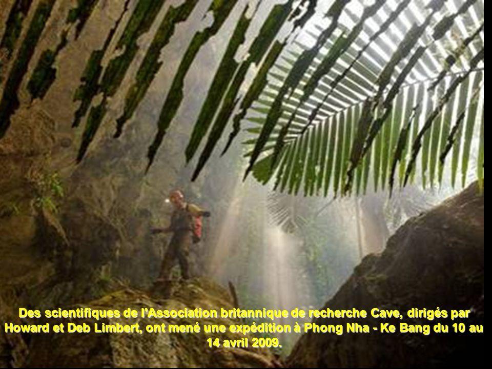 Des scientifiques de l Association britannique de recherche Cave, dirigés par Howard et Deb Limbert, ont mené une expédition à Phong Nha - Ke Bang du 10 au 14 avril 2009.