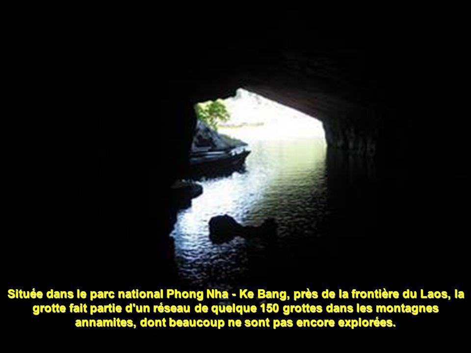 Leffondrement des dolines : A 300 m sous la surface de la jungle, des gouffres se sont créés quand une partie du plafond de la caverne sest effondrée, permettant la création de nouveaux écosystèmes.