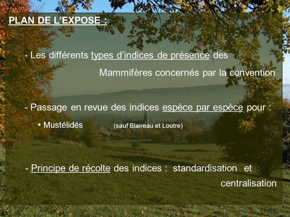 PLAN DE LEXPOSE : - Les différents types dindices de présence des Mammifères concernés par la convention - Passage en revue des indices espèce par esp