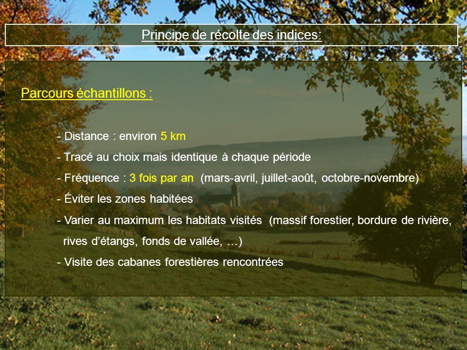 Principe de récolte des indices: Parcours échantillons : - Distance : environ 5 km - Tracé au choix mais identique à chaque période - Fréquence : 3 fo
